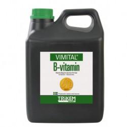 VIMITAL Vitamine B